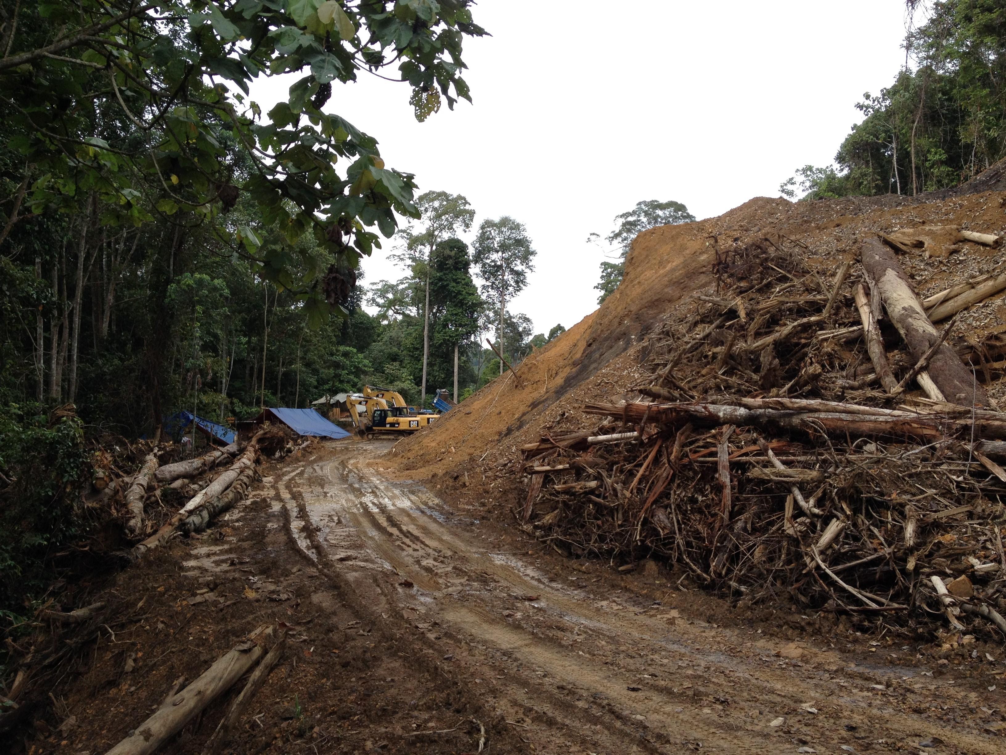Road construction Sabah TNC © Joerg Hartmann